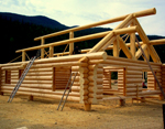 Проект рубленного дома из бревна-Канадская технология